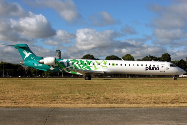 Bombardier CRJ900 Systems Page Photo